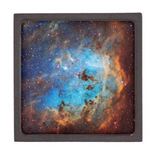 The Tapdole Nebula Gift Box