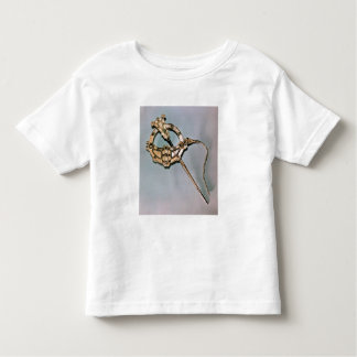 The Tara Brooch, from Bettystown, County Meath (ca T-shirt