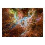 The Tarantula Nebula 30 Doradus NGC 2070 Cards