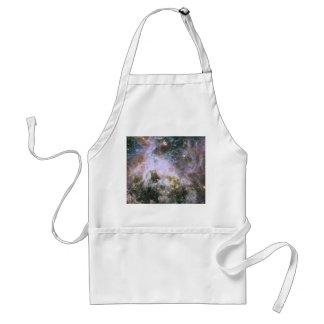 The Tarantula Nebula - Frame 4 Adult Apron