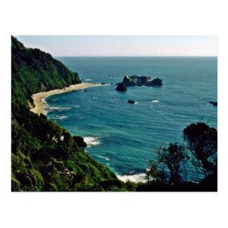 The Tasman Sea From Arnott Point Postcard