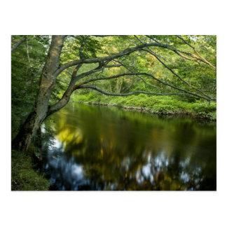 The Taunton River in Bridgewater, 2 Postcard