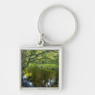 The Taunton River in Bridgewater, 2 Silver-Colored Square Keychain