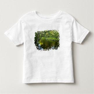 The Taunton River in Bridgewater, 2 Toddler T-shirt