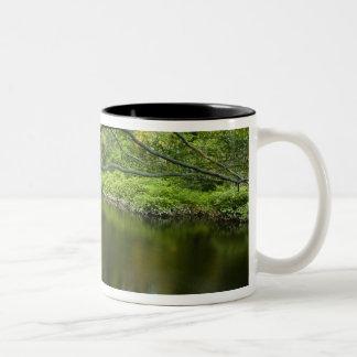 The Taunton River in Bridgewater, 2 Two-Tone Coffee Mug