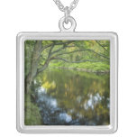 The Taunton River in Bridgewater, Custom Necklace