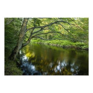 The Taunton River in Bridgewater, Photo Print