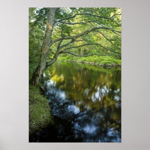 The Taunton River in Bridgewater, Print