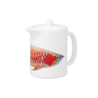"The tea pot ""of Super Red Arowana"""