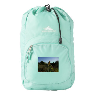 The Teasel Backpack