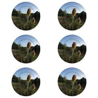 The Teasel Button Covers