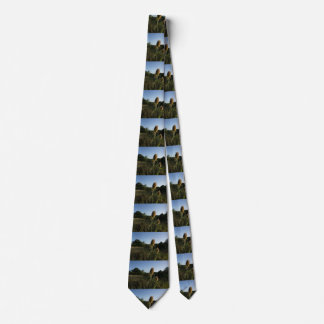 The Teasel Neck Tie