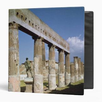 The Temple of Apollo Binder