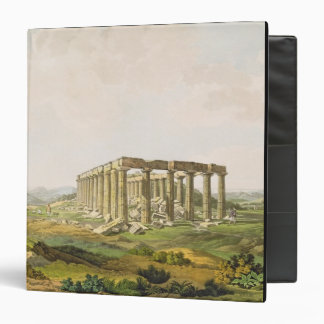 The Temple of Apollo Epicurius, plate 25 from Part Vinyl Binders