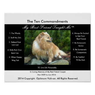 The Ten Commandments My Best Friend Taught Me Poster