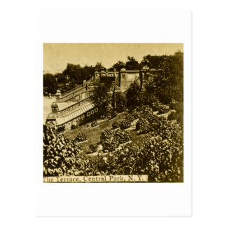 The Terrace in Central Park NYC Vintage 1900 Postcard