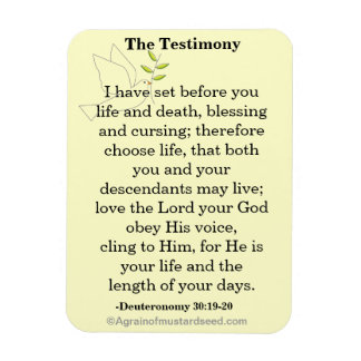 The Testimony Scripture Magnet