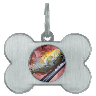 the Teton Pet ID Tag