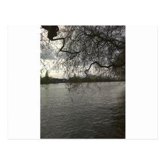 The Thames near Putney Postcard