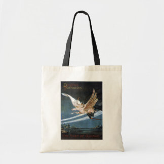 """The Thief of Bagdad"" Bag"