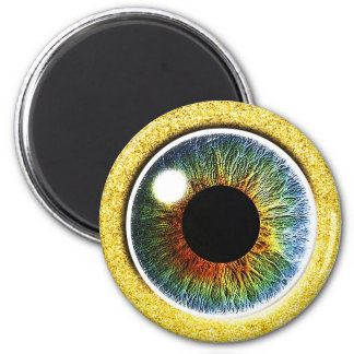 the Third Eye 2 Inch Round Magnet