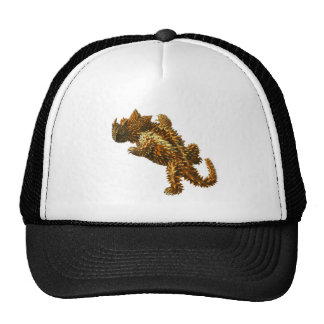 The thorny devil hat