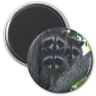 The Three Amigos 2 Inch Round Magnet