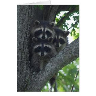 The Three Amigos Greeting Card