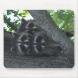 The Three Amigos Mouse Pad