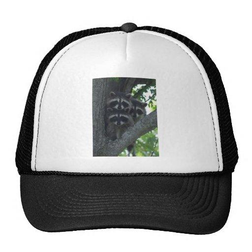 The Three Amigos Trucker Hat