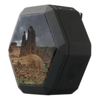 The Three Gossips Arches National Park Black Bluetooth Speaker