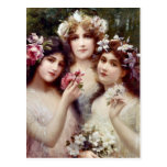 The Three Graces Postcard