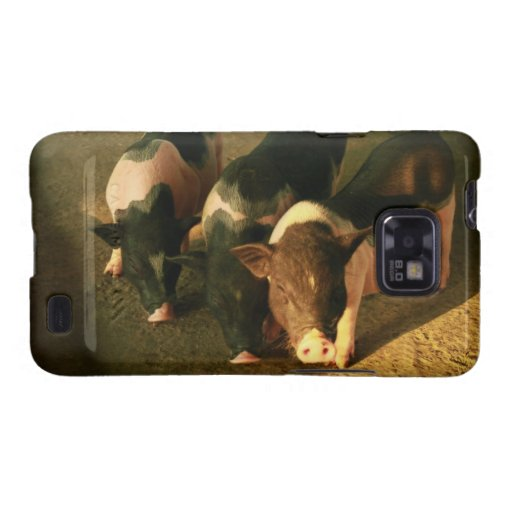 The Three Little Pigs Galaxy S2 Covers