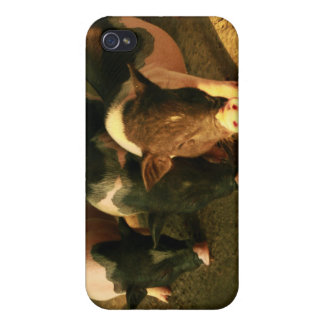The Three Little Pigs iPhone 4 Cases