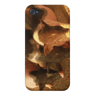 The Three Little Pigs iPhone 4 Case