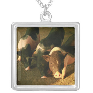 The Three Little Pigs Jewelry