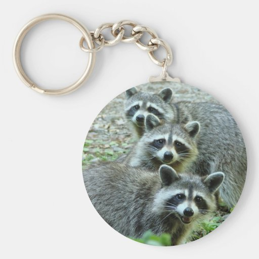 The Three Raccoons Basic Round Button Keychain