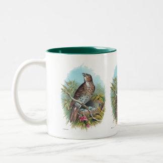 The Thrush Vintage Bird Illustration Two-Tone Coffee Mug
