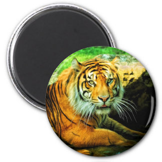 The Tiger Magnet