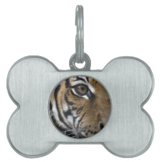 The Tiger's Eye Pet Name Tags