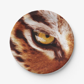 The Tiger's Eye Photograph Paper Plate