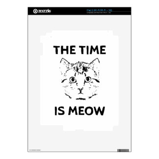 The Time is Meow iPad 2 Skin