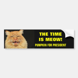 The Time Is Meow! Pumpkin for President Car Bumper Sticker