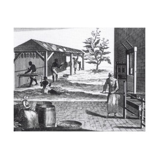 The Tobacco Manufactory in Different Branches Canvas Print