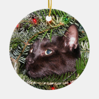 The tomcat in the Christmas tree Ornament