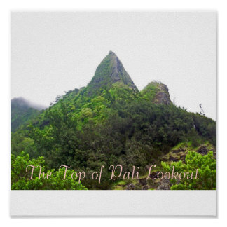The Top of Pali Lookout Poster