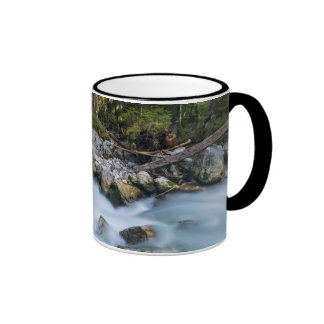 The torrent Ramsauer Ache Ringer Coffee Mug