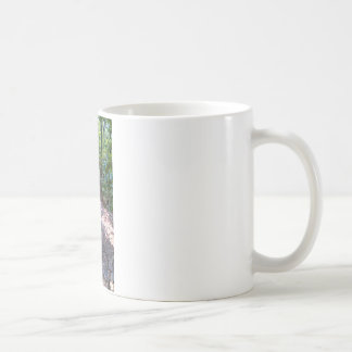 The Trail to Robber's Cave Coffee Mug