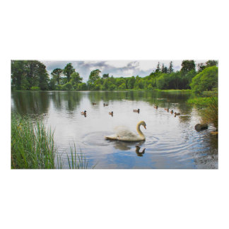 The Tranquil Lake Print