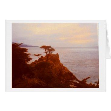 Rebecca_Reeder The Tree at Monterey Peninsula, California Card